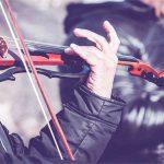 best violin brands for professionals